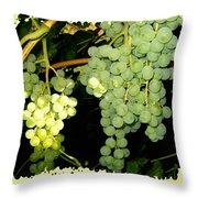 Ripe On The Vine Throw Pillow