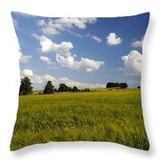 Green Belt Land 2 Throw Pillow