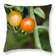 Ripening Throw Pillow