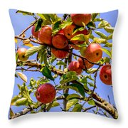 Ripening In The Sun Throw Pillow