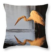 Ripple In Time Throw Pillow