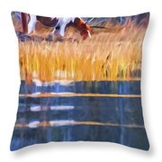 Rippled Reflection Throw Pillow