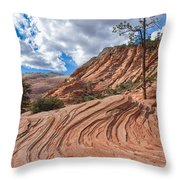 Rippled Rock At Zion National Park Throw Pillow
