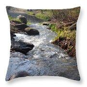Rippleing Stream Throw Pillow