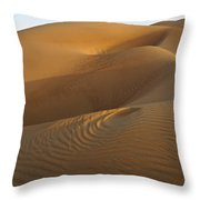 Ripples And Curves Throw Pillow