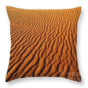 Ripple Patterns In The Sand 1 Throw Pillow