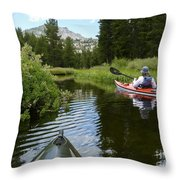 Ripples Of Meadow And Mountain Throw Pillow