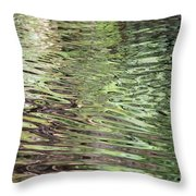Ripples On Florida River Throw Pillow