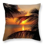 Rise And Behold Throw Pillow