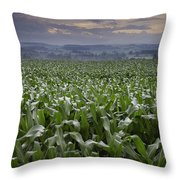 Rise To Meet The Day Throw Pillow