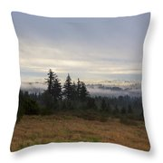 Rising From The Mist Throw Pillow