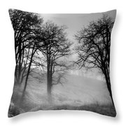 Rising Mists In The Bald Hills Throw Pillow