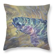 Rainbow Rising Throw Pillow