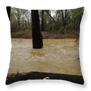 Rising Waters With Timber Throw Pillow