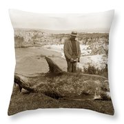 Rissos Dolphin Grampus Griseus Circa 1892 Throw Pillow