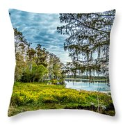River 2 Hdr Throw Pillow