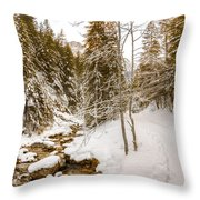 River And Path Throw Pillow