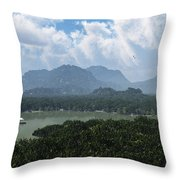 River And Riverboat... Throw Pillow