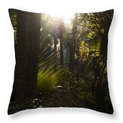 River Bend Park 1 Throw Pillow