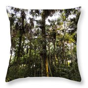 River Bend Park 2 Throw Pillow