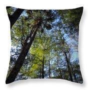 River Bend Park 3 Throw Pillow
