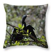 River Bird Throw Pillow