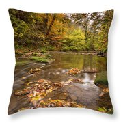River Blyth In Autumn Vertical Throw Pillow