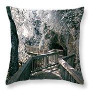 River Boardwalk Throw Pillow