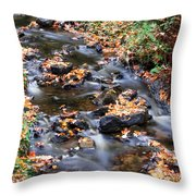 River Cascades Throw Pillow