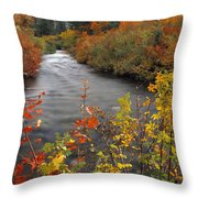 River Color Throw Pillow