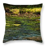 River Colors Throw Pillow