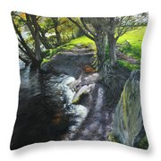 River Dee At Rhug Throw Pillow