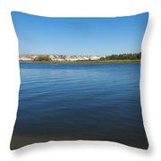 River Don Throw Pillow