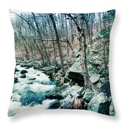 River Flowing Through A Valley, Hudson Throw Pillow