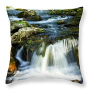River Flowing Through Woods Throw Pillow