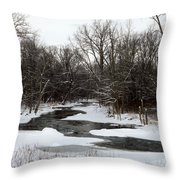 River Freeze Throw Pillow