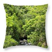 River Glimpses Throw Pillow