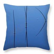 River Grass Throw Pillow
