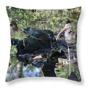 River Guard Throw Pillow
