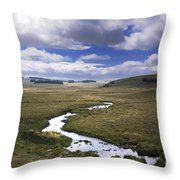 River In A Landscape Throw Pillow