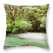 River In Rainforest Wilderness Of Fiordland Np Nz Throw Pillow