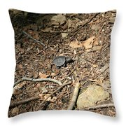 River Journey Throw Pillow