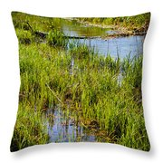 River Kennet Marshes Throw Pillow