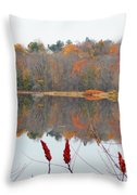 River Mirror Autumn Throw Pillow