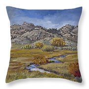 River Mural Autumn View  Throw Pillow