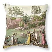 River Near San Benedetto, Madagascar Throw Pillow
