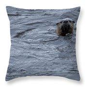 River Otter   #0695 Throw Pillow