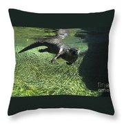 River Otter-7714 Throw Pillow