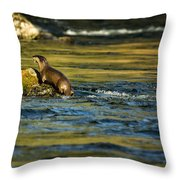 River Otter On A Rock Throw Pillow