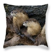 River Otter Trio   #0922 Throw Pillow